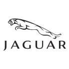 Jaguar Trusts in Airius